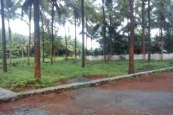 Emdees Gardens At Chirakkakod