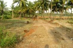Eco Village At Kanjikode